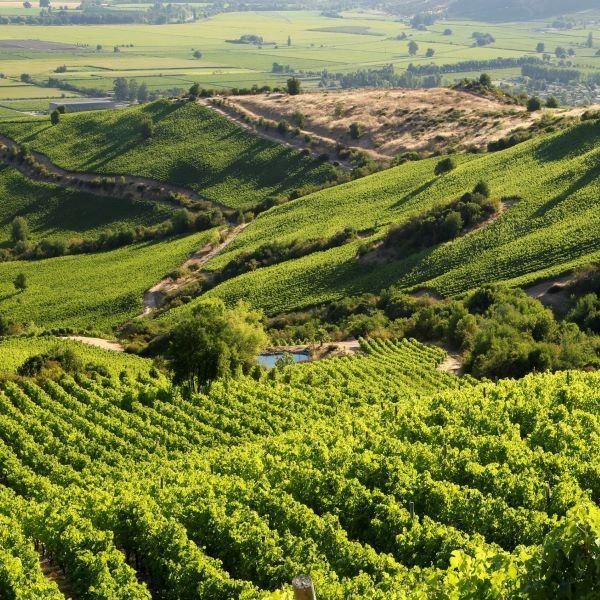 World's Best Vineyards 2020